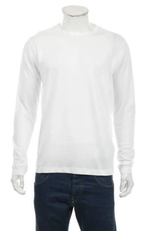Блуза BRAVE SOUL