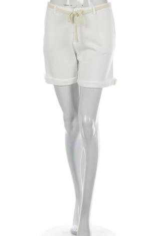 Къси панталони SUN 68