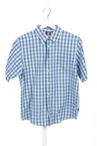 Детска риза GATO NEGRO