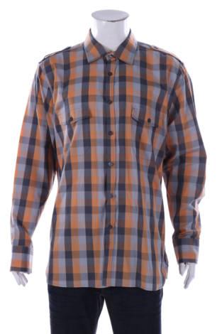 Риза Alfani