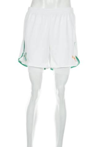 Футболни шорти PUMA