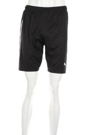 Спортни къси панталони PUMA