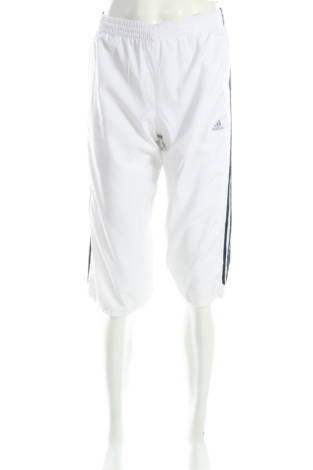 Къси панталони Adidas1