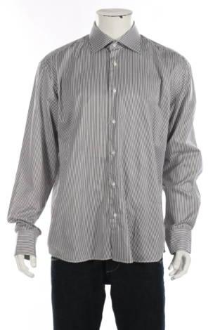 Риза Vannucci1
