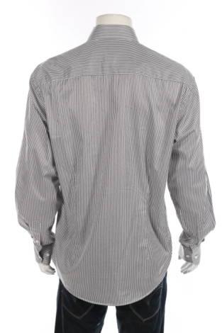 Риза Vannucci2