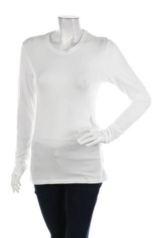 Блуза COLLECTIVE