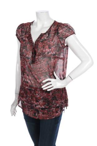 Риза Ana1