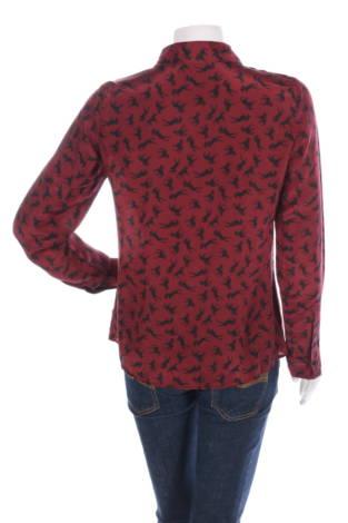 Риза Hallhuber2