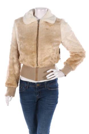 Зимно палто Design Lab