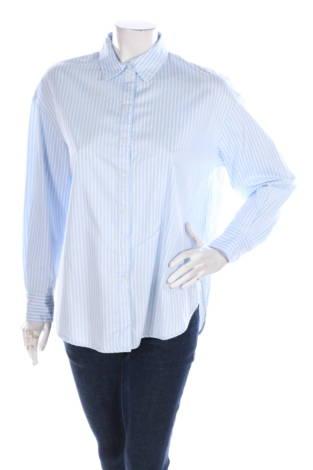 Риза H&M1